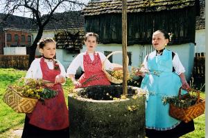 Kićenje bunara na Cvjetnicu (Gundinci, Slavonija) (Iz fototeke Posudionice i radionice narodnih nošnji)